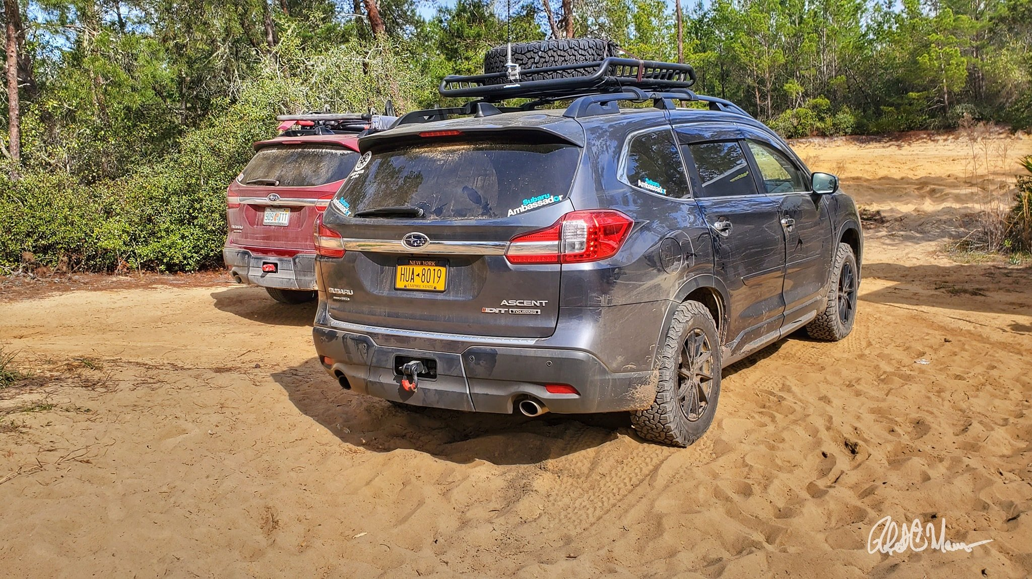 #AscentAdventure: Off Roading in Ocala National Forest
